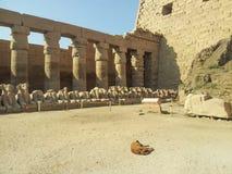 Karnak寺庙 库存照片