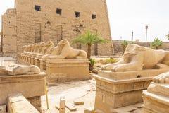 Karnak Świątynny kompleks, Egipt obrazy royalty free