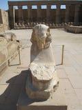 Karnak. Courtyard Karnak trimmed stone carvings in Egypt royalty free stock photo