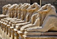 karnak egiptu do świątyni Zdjęcia Royalty Free