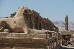 karnak egiptu do świątyni Fotografia Royalty Free