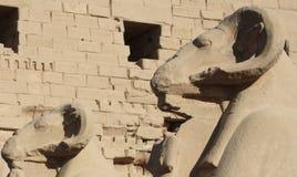 karnak egiptu do świątyni Zdjęcie Stock