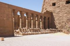 Karnak - Egypte royalty-vrije stock afbeelding