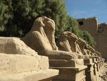 Karnak, Luxor. Avenue of the Sphinx, Karnak, Luxor, Egypt Royalty Free Stock Images