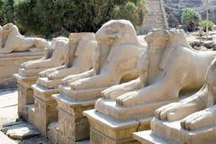 karnak Luxor Zdjęcie Royalty Free