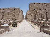 Karnak ruins Royalty Free Stock Images