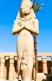 karnak statuy świątynia fotografia royalty free