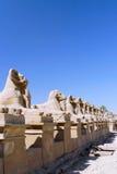 Karnak Tempel-Komplex, Luxor, Ägypten. stockfoto