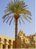 Karnak temple 03 Royalty Free Stock Image