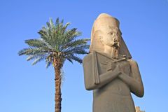 Karnak Temple. Statue of King Ramses II at the Karnak Temple, Egypt royalty free stock photos