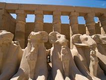 Karnak Temple. Complex in Luxor stock images