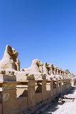 Karnak Temple Complex, Luxor, Egypt. Stock Photo