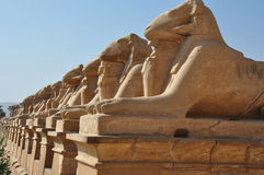 Karnak temple in egypt Stock Photography