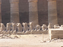 Karnak temple, Egypt, Africa - sphinxes. Ram-headed sphinxes Stock Photo