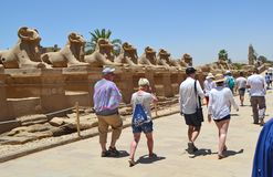 Karnak temple entrance with group of tourists stock image