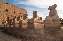 Karnak Temple - Luxor, Egypt, Africa Stock Image