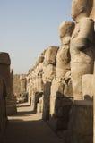 Karnak Temple. Luxor, Egypt Royalty Free Stock Photos