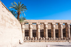 Karnak temple, Luxor, Egypt. Part of the Karnak temple (Ancient Thebes with its Necropolis), the main place of worship of the eighteenth dynasty Theban Triad royalty free stock images