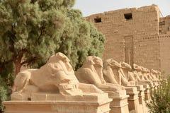 Karnak Temple in Luxor Egypt. The Karnak temple ruins in Luxor Egypt Royalty Free Stock Photography