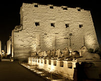 Karnak temple in Luxor at night Stock Photography