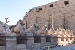 Karnak temple Royalty Free Stock Photography