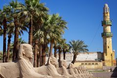 Karnak Temple Sphinxs. Avenue of the Sphinxs, Karnak Temple, Nile Valley, Egypt stock image