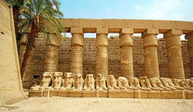 Karnak Temple ( Thebes ) in Luxor. Egypt Royalty Free Stock Photo