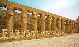 Karnak Temple ( Thebes ) in Luxor. Egypt Stock Photography