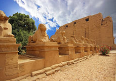 Karnak Temple ( Thebes ) in Luxor. Egypt Royalty Free Stock Photography