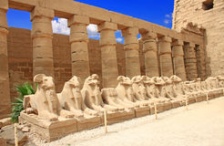 Karnak Temple ( Thebes ) in Luxor. Egypt Stock Photos