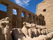 Karnaktempel Stock Afbeeldingen