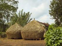 karnataka wiejski Zdjęcia Royalty Free