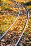 Karnawału pociągu poręcz Zdjęcia Stock