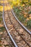 Karnawału pociągu poręcz Fotografia Stock
