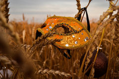 Karnawał maska w banatce Fotografia Stock