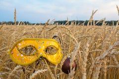 Karnawał maska w banatce Zdjęcia Royalty Free