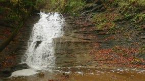 Karnemelkdalingen van Autumn Loop stock footage