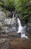 Karnemelkdalingen van Lehigh-het Park van de Kloofstaat Pennsylvania stock fotografie