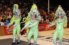 karneval 2008 Royaltyfria Bilder
