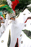 karneval Arkivbilder