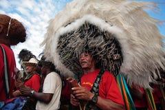 Karneval brazil för festival för Bumba meuboi Royaltyfria Bilder