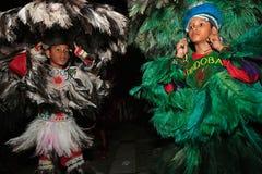 Karneval brazil för festival för Bumba meuboi Royaltyfri Foto