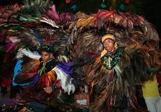 Karneval brazil för festival för Bumba meuboi Arkivbilder