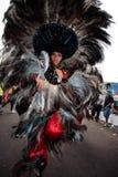 Karneval brazil för festival för Bumba meuboi Arkivfoton