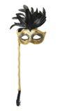 karneval isolerad maskering Arkivbilder