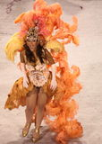 karneval rio Fotografering för Bildbyråer