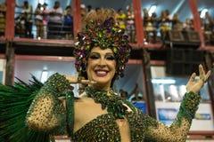 Karneval 2014 - Rio de Janeiro Lizenzfreie Stockfotos