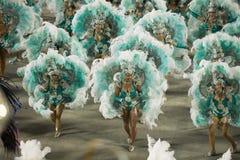 Karneval 2014 - Rio de Janeiro stockfotografie