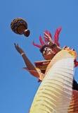 Karneval in Rio de Janeiro Lizenzfreies Stockbild