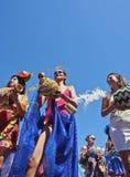 Karneval in Rio de Janeiro Stockfotografie